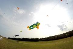 20161001_KiteFlyHigh_Drachenfest-Laichingen-2016_01.10.-03.10.2016_Revolution_Drachen_Einleiner_Kiten_Kite-Schule-10