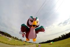 20161001_KiteFlyHigh_Drachenfest-Laichingen-2016_01.10.-03.10.2016_Revolution_Drachen_Einleiner_Kiten_Kite-Schule-21