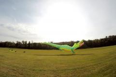 20161001_KiteFlyHigh_Drachenfest-Laichingen-2016_01.10.-03.10.2016_Revolution_Drachen_Einleiner_Kiten_Kite-Schule-25